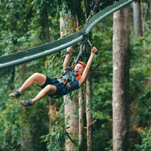 zipline,chiangmai,thailand,adventure,activity,forest